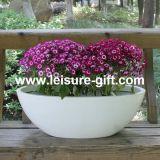 Oval Fiberglass Flower Planter (FO-270)