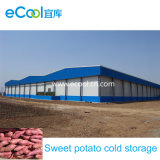 Sweet Potatoes Cold Rooms with Refrigeration and Humid Control System