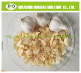China Strong Garlic Flavor Seasoning Garlic Flake