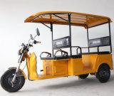 Chongqing Electric 5 Passenger Tricycle