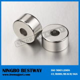 Super Convinient Loudspeaker Ring NdFeB Magnet