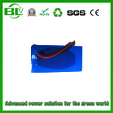 Lawn Mower Battery 24V 20ah / 24V 10ah Lithium-Ion Battery