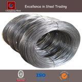 Hot Dipped Galvanized Iron Wire (CZ-W20)
