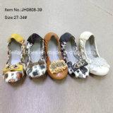 Latest Girl Shoes Kids Ballet Shoes Dance Shoes (JH0808 -39)