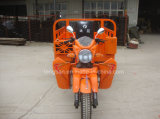 China Factory Supplier Smart Three Wheel Motorcycle