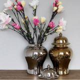 Chinese Porcelain Ceramic Jar (LJ-24)