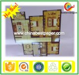 Eastern Dragon Paper 230g Dull Coated Art Paper
