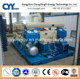 CNG16 Skid-Mounted Lcng CNG LNG Combination Filling Station