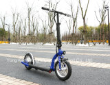 """12"""" Wheel 300W Lithium Battery E Scooter (ES-1201)"""