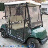 Mini 2 Person Electric Buggy