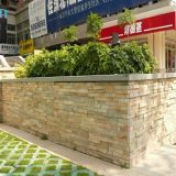 Project in China Yellow Culture Slate for Exterior Wall Cladding