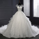 Short Sleeve Lace Organza Ball Bridal Gown