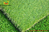 Popular Garden Artificial Grass in Spain Market