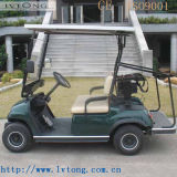 Sale 2 Passengers Electric Buggy