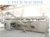 Complete 5 Gallon Pure Water Bottling Filling Machinery (TXG-300)