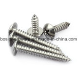 Round Head Self Tapping Screw