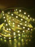 Ce&RoHS SMD5050 LED RGB Strip Light