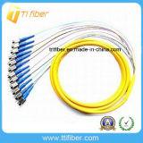 Singlemode 12 Core Fan out FC/Upc Fiber Optic Pigtail