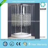 Elegant Sliding Simple Shower Room Shower Enclosure Shower Cubicle (BLS-9206)