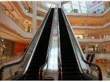 30 Degree Parts for Indoor Escalator