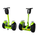Double Battery Electric Motor Scooter Electric Bike 4000W