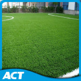 Factory Wholesale Top Quality Football Artificial Grass (W50)