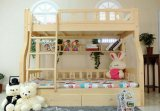 Solid Wooden Bed Room Bunk Beds Children Bunk Bed (M-X2204)