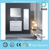 Wall-Mounted Bathroom Cabinet, Bathroom Furniture with Side Cabinet, Silver Mirror (BLS-EU067)