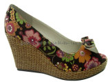 Women Shoes for Summer 2013 (GS-440308)