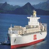 Focus Ocean Freiht Logistics Service to Kawasaki