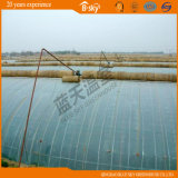 High Cost Performance Solar Green House for Vegetable Planting