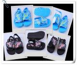 New Design Flip Flop Sandal