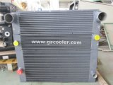 Side by Side Combination Radiator for Duty Car (C012)