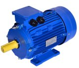 Approved Russian GOST Induction Motor