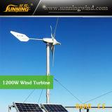 Wind Solar Hybrid Pumping System (MAX 1000W System)