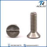 A2/ 18-8/316 Stainless Steel Slotted Flat Countersunk Head Machine Screws