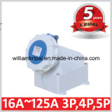 IP67 32A 2p+E 230V Wall-Mounted Cee Outlet