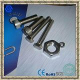 Stainless Steel Hex Bolt and Hex Nut