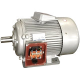 Y, Y2 Series Three-Phase Induction Electrical Motor