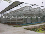 Multi-Span Arch PC Greenhouse