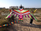 Promotional Bird Kite with 100meters Nylon Line
