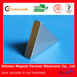 Triangle Permanent Rare Earth Magnet NdFeB Magnets