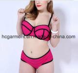 Sex Lady′s Large Size Bikini, Plus-Size Bikini Swimming Wear