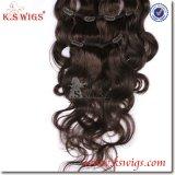 Brazilian Virgin Clip Hair Remy Human Hair Extension