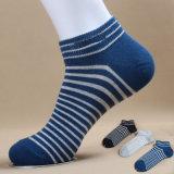 Men′s Cotton Sports Socks (MA207)