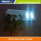 New Solar Products 12W Solar Garden Lamp