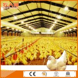 Prefabricated Poultry House with Automatic Environmental Control Equipment