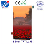 5.0 TFT LCM Resolution 480X854 High Brightness with CTP