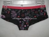 New Fashion Young Lady Slip Brief Women Underwear Panty