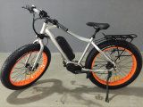 Most Famous Electric Bike Mountain Type Ebike with 48V 350W MID Drive Motor
